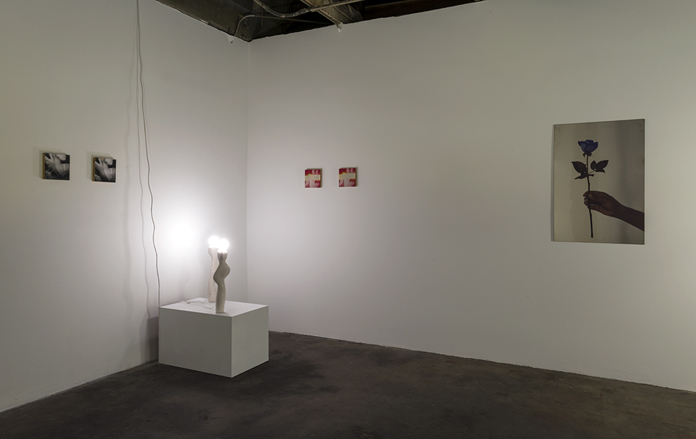 Installation Shot, Madames Electric at The Pit, curated by Shana Lutker