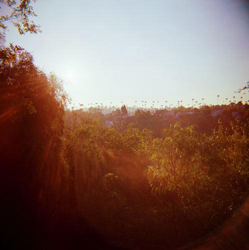 LA_Like_crop.jpg