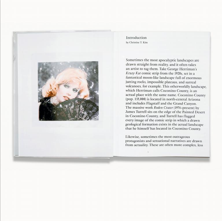 Public Display #4, p.3